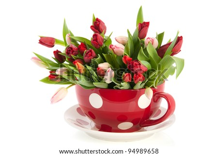 Big dotted red cup and saucer full with colorful tulips