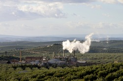 Big factory with steel chimneys and a lot of somke in the middle of a big olive grove.