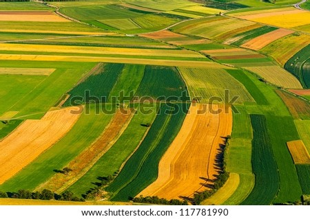 Big field ready to harvest aerial view