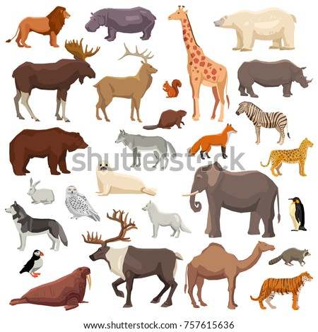 Big flat set of wild animals and birds living in various climatic zones isolated on white background  illustration
