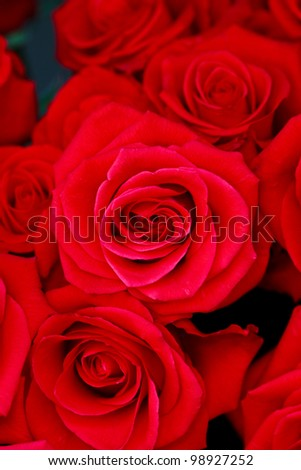 Big fresh bunch of red roses