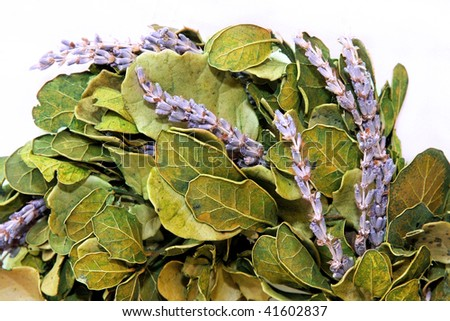 Big fresh wreath with lavender and laurel leaves