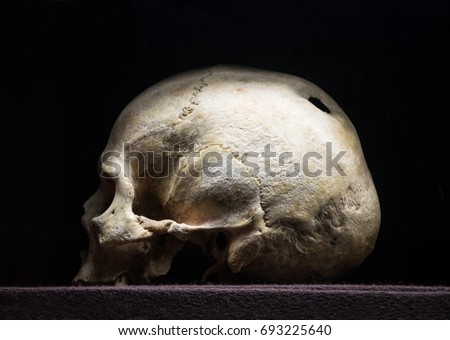 Big hollow in braincase isolated on dark backdrop. Gloomy rotten wreck child corpse. Terrible gray die pericranium. Closeup profile detail view with space for text stock photo