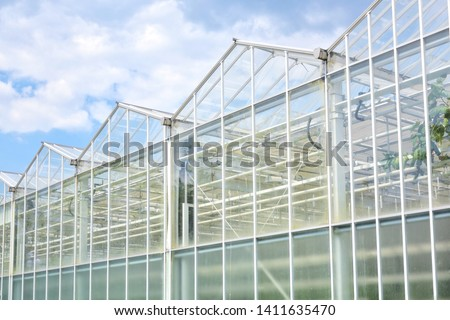 Big industrial greenhouse from glass panels on blue sky background. Agriculture glasshouse for growing plants. Transparent green house for growing organic vegetables. Cultivating agricultural plant #1411635470