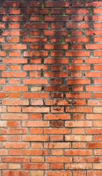 big old wet wall with water dripping from up to down on the orange bricks - vertical background texture