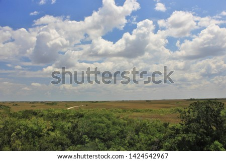 Big Partly Cloudy Sky Over Tree Tops and an Empty Road Through a Distant Savanna #1424542967