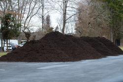 big pile mulch black garden ecology