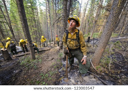 BIG PINEY, WY - JULY 8: Firefighter Brian Pickard watches for falling tree limbs while fighting a forest fire with his crew, Sunday July 8, 2012 near Big Piney, Wy.