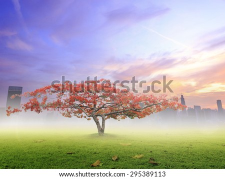 Big plant with beautiful red flowers on big city with colorful sunset background. Ecology concept. World Environment Day concept.