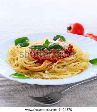 Big plate of pasta with tomato sauce and parmesan