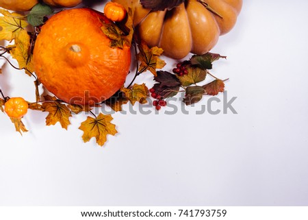 big pumpkins for halloween with autumn golden leaves, dry grass on a white background - Shutterstock ID 741793759