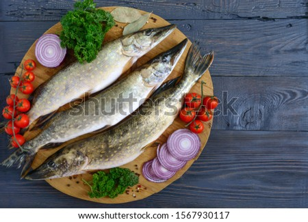 Big raw pikes with vegetables and herbs on a wooden tray. Fresh catch. Dietary product. Top view. Ready to cook. #1567930117