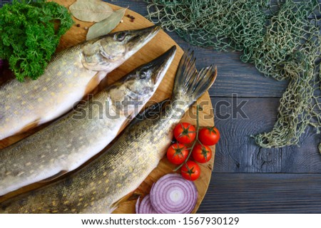 Big raw pikes with vegetables and herbs on a wooden tray. Fresh catch. Dietary product. Top view. Ready to cook. #1567930129