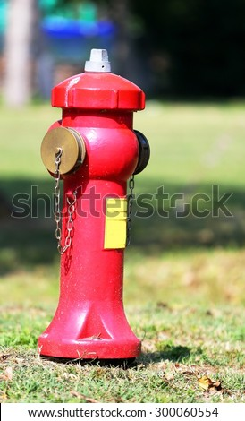 big red fire hydrant to extinguish fires in the village