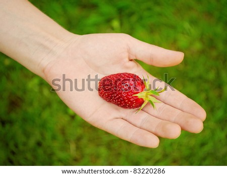 big red strawberry on hand, green background