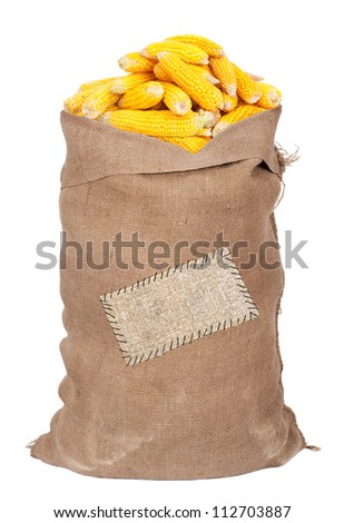 Big sack of corn cobs