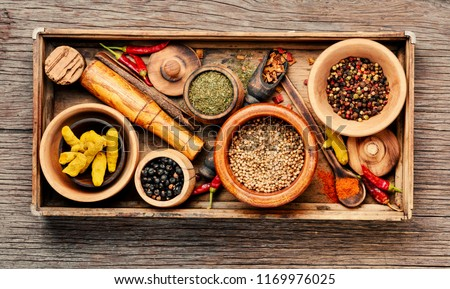 Big set Indian spices and herbs.Food and cuisine ingredients.