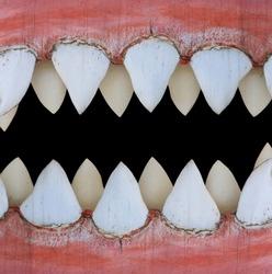 big shark mouth as nice animal background