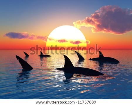 Big sharks and sunset sea - digital artwork.