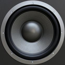 big speaker close-up view. Subwoofer.