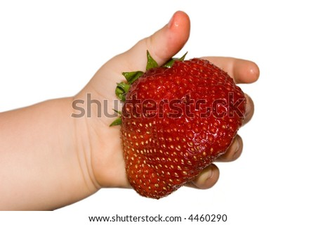 big strawberry in child's  hand on white background