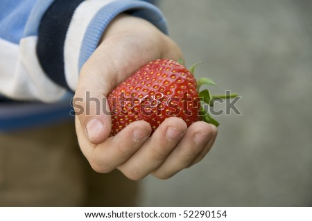 Big strawberry in the hand of a child