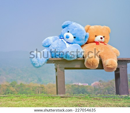 big teddy bears  sitting on wood chair with blue sky background