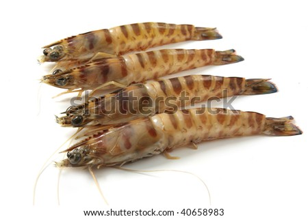 big tiger prawns - stock photo