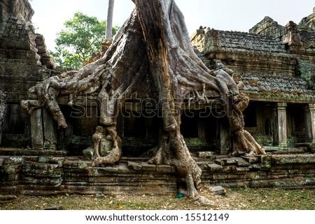 angkor wat temple. Khan Temple, Angkor Wat,