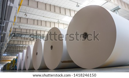 Big White Paper Rolls Placed on the Floor ストックフォト ©