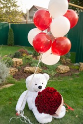 Big white teddy bear with bouquet 101 roses and red balloons in the garden
