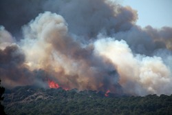 big wild fire in the mountain
