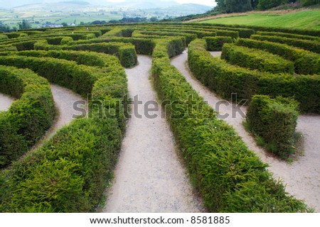 Biggest maze in Europe at Castlewellan, Ireland