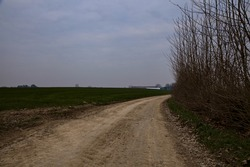 Bike lane bordered by fields and bare trees in the italian countryside in winter on a cloudy day