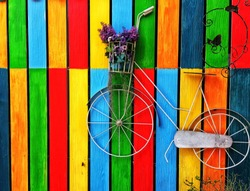 Bike Model on The Color Wall