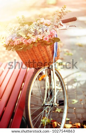 bike with basket of spring...