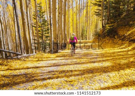 Biker enjoying beautiful autumn weather