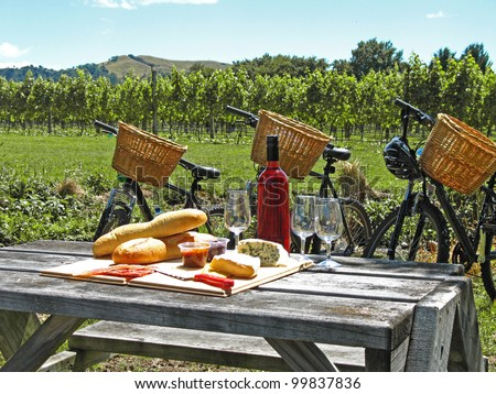 Bikes in vineyard, New Zealand