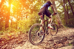biking - rear wheel of a mountain bike