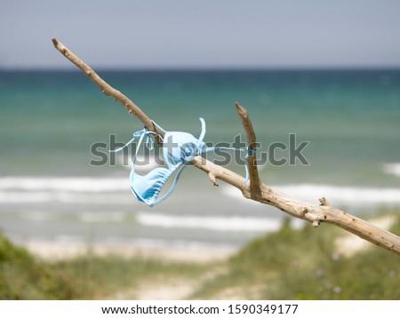 Bikini top on branch at beach