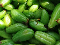 Bilimbi is tropical tree, Fruit is sour taste