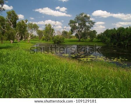 Billabong in Kakadu National Park, Australia
