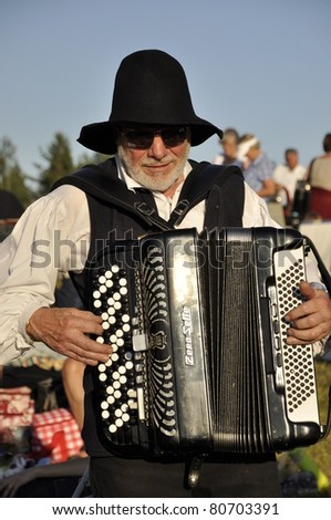 BINGSJO, SWEDEN - JULY 6: Fiddlers and accordion ensemble at Bingsjostamman music festival in Bingsjo, Sweden, July 6 2011, Bingsjo, Sweden.