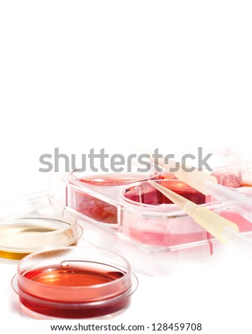 Biochemistry of blood tests. Cell culture for the biomedical diagnostic. Plastic labware with blood analysis. Equipment of scientific lab for experiments and research.