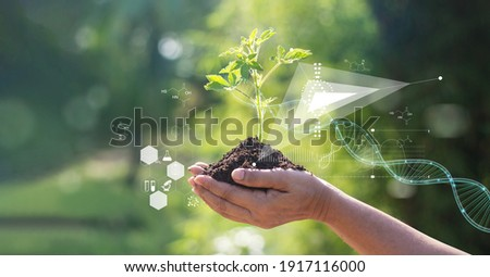 Biology laboratory nature and science, Plants with biochemistry structure and chemical formula on green background.   Foto stock ©