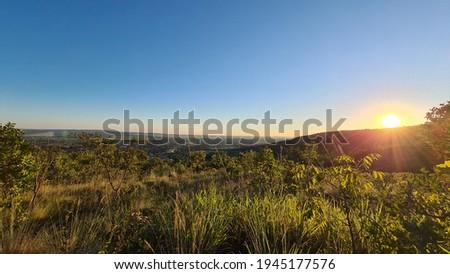 BIOMA CERRADO BRASIL FOREST SUN Foto stock ©