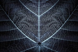 Biomimicry - Hybrid Nature - Abstract Illustration