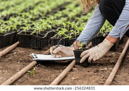 Biotechnology woman engineer with a clipboard and pen examining a plant  for disease! ストックフォト ©