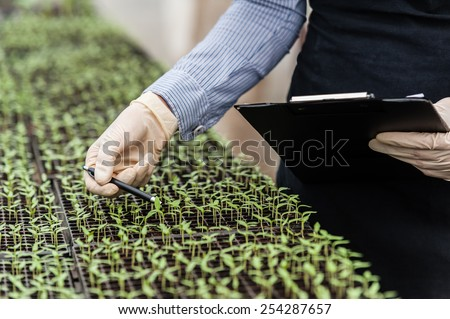 Biotechnology woman engineer with a clipboard and pen examining a plant leaf for disease!