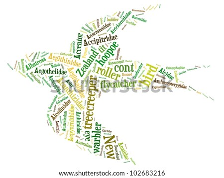Bird family names word cloud composed in the shape of a swallow bird